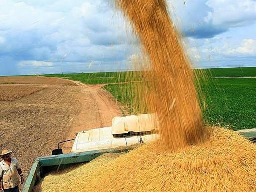 Produção brasileira de grãos deve bater novo recorde