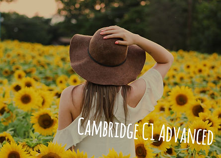 Cambridge C1 Online course