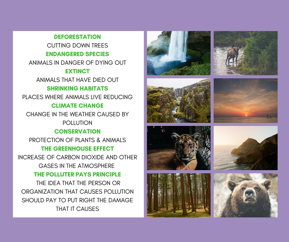 IELTS Speaking - IELTS Writing - Describing the Environment - Lexical Resource