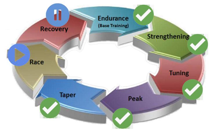 Seven Step Training Program