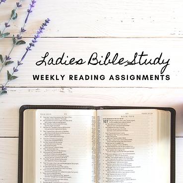 YV Ladies Bible Study (1).png