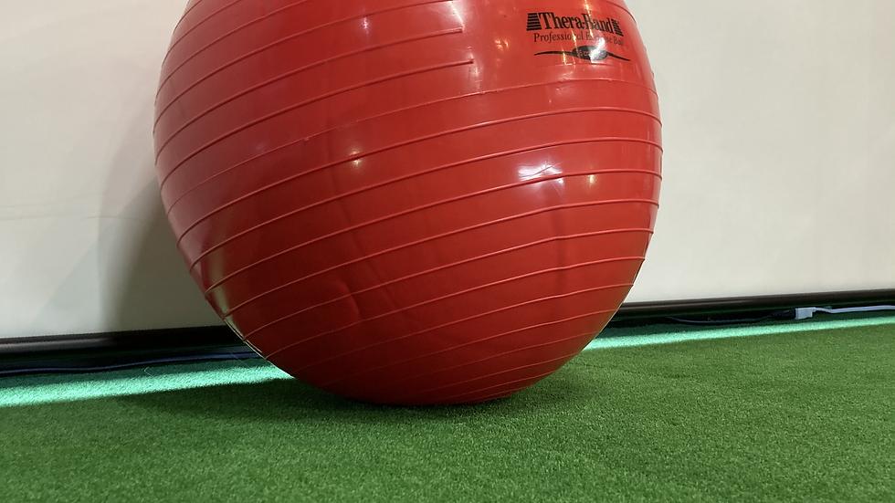 セラボール 赤(55cm)