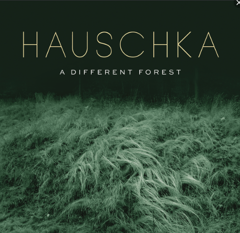 Hauschka 'A Different Forest' out today on Sony Classical
