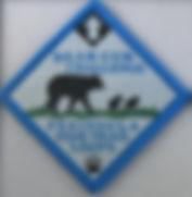 Bear Cub Badge Final Art.JPG