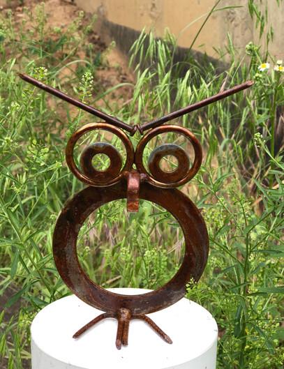 Little Washer Owl