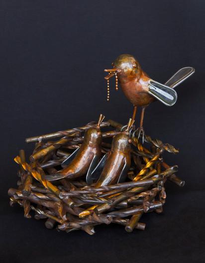 Momma Bird Feeding