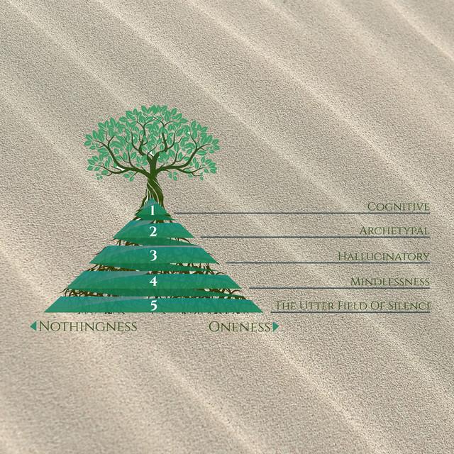 מפת חמשת השורשים והשדה הקוגניטיבי אדואלי