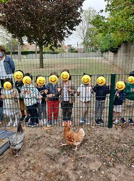 Enfants et poules VH.png