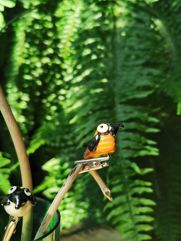 Vögeli.jpg