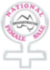 national female sale FINAL.png