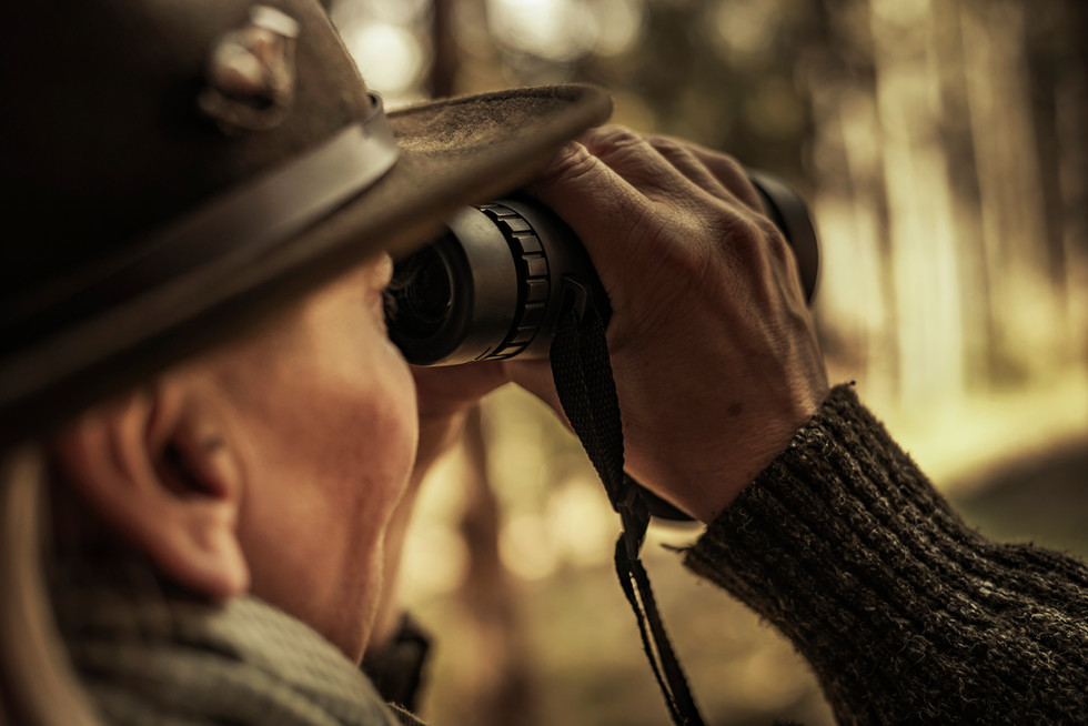 Jagdfotografie  - Chandler Photography