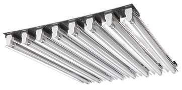 MOJO COW PS1 8 lights long spine