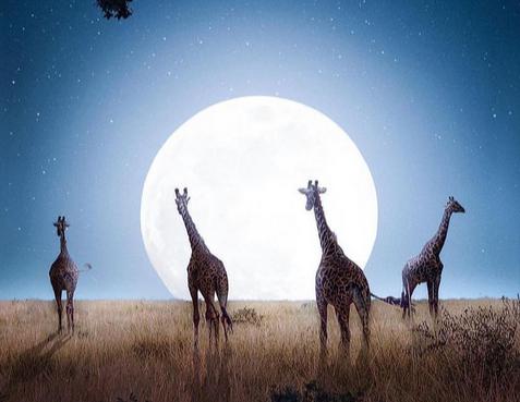 Pleine Lune du 21 Septembre, Mise au Point dans nos Relations