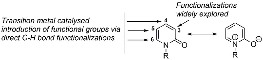 2-Pyridone functionalization.tif