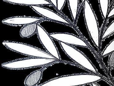folhas brancas.png
