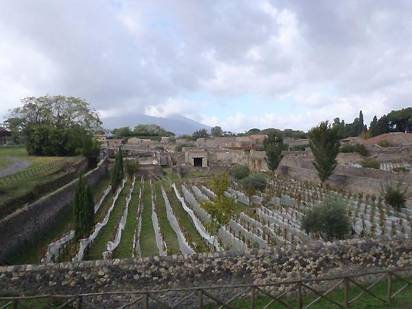 Pompeii 076.JPG