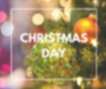 christmas-day-fox.png