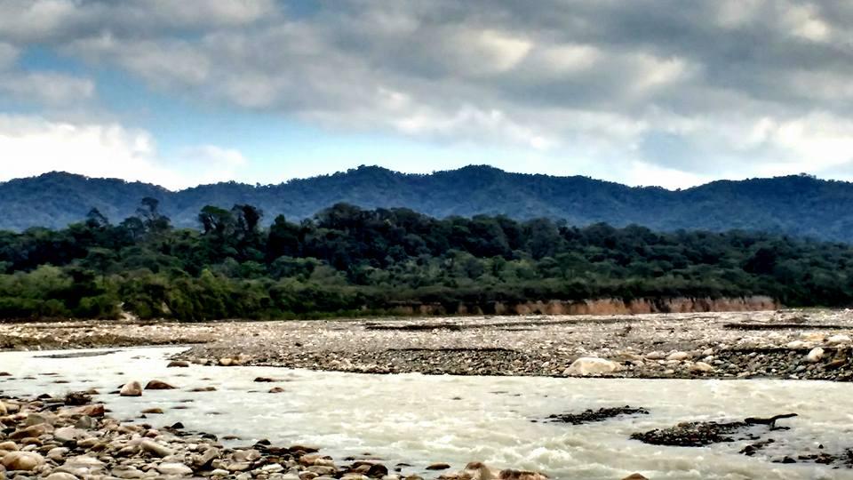 Río y Selva