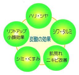 炭酸の効果図2