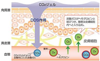 炭酸パックの説明図