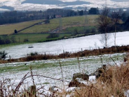 Winter frost in Baldernock