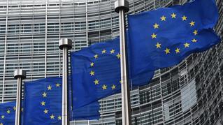 A PARTICIPAÇÃO DA SOCIEDADE NA UNIÃO EUROPÉIA E O PRINCÍPIO DA ABERTURA: A SUPERAÇÃO DO MERO ACESSO