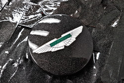 Aston Martin Centre Caps
