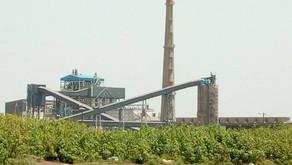 Centrale à charbon de Bargny : Les femmes de Sendou demandent à la Bad de tenir ses promesses.