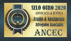 Araújo & Nascimento Advogados Associados.assinatura.png