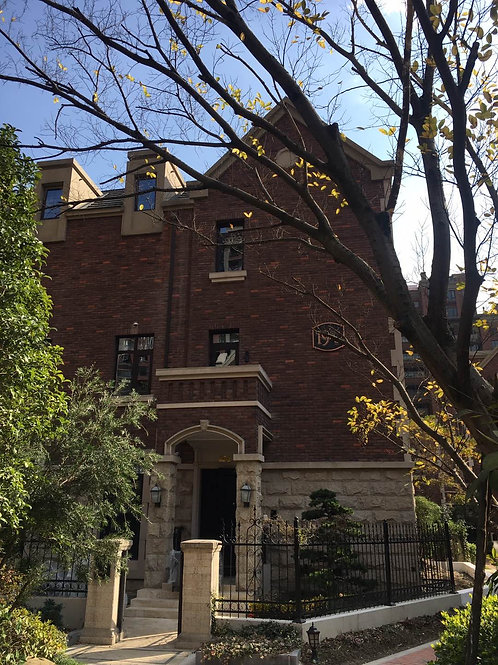 Project Hangzhou Villa with DLA