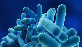 Legionella Management Basic.jpg