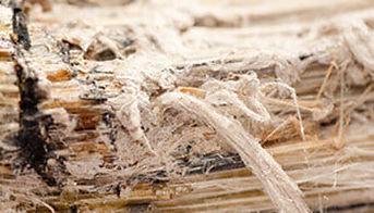 Asbestos Awareness for Architects and De