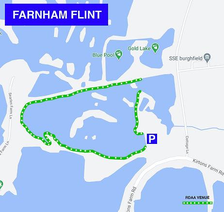 FARNHAM-FLINT.jpg