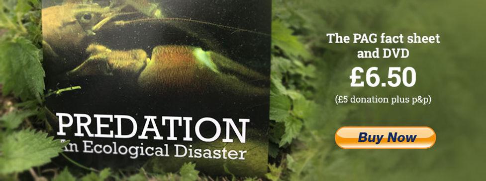dvd-banner.jpg
