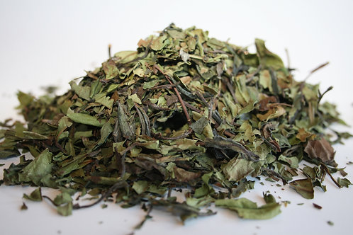 Pai Mu Tan Organic China White Tea