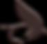 IP-logo_edited.png