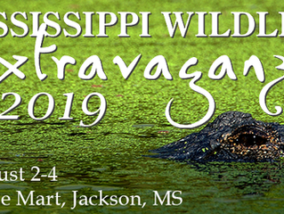 Mississippi Wildlife Extravaganza - Part Two: The Down Fall Of The 2019 Ganza