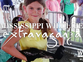 Mississippi Wildlife Extravaganza 2019 Plagued with Issues  (Multi-Part Issue), Part 1