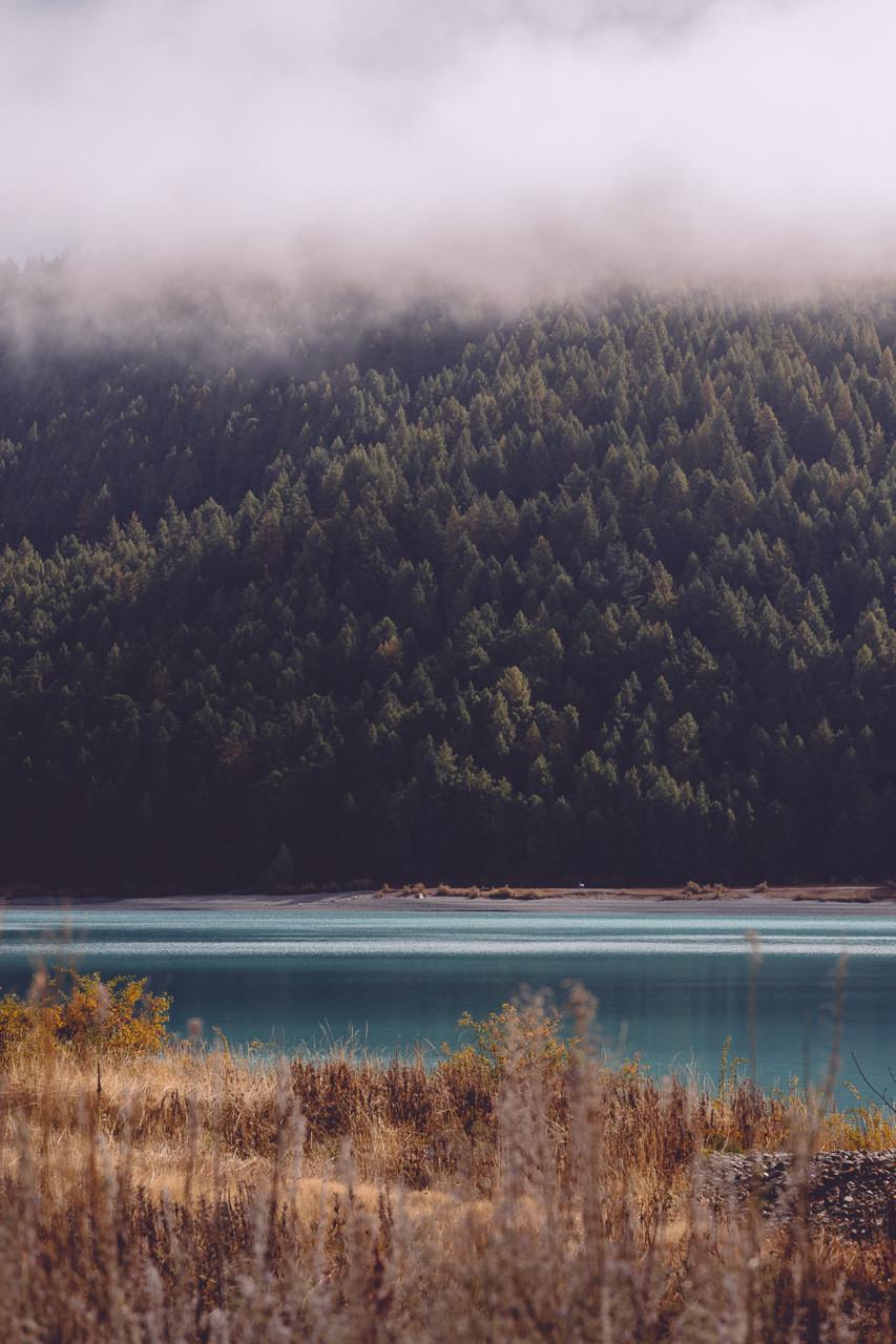 Lake Tekapo's Beautiful Water Edge