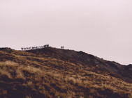 Travel Photography New Zealand-176.jpg