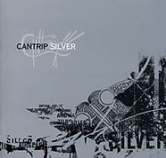 silver_cover.jpg