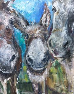 3 Donkey Sisters