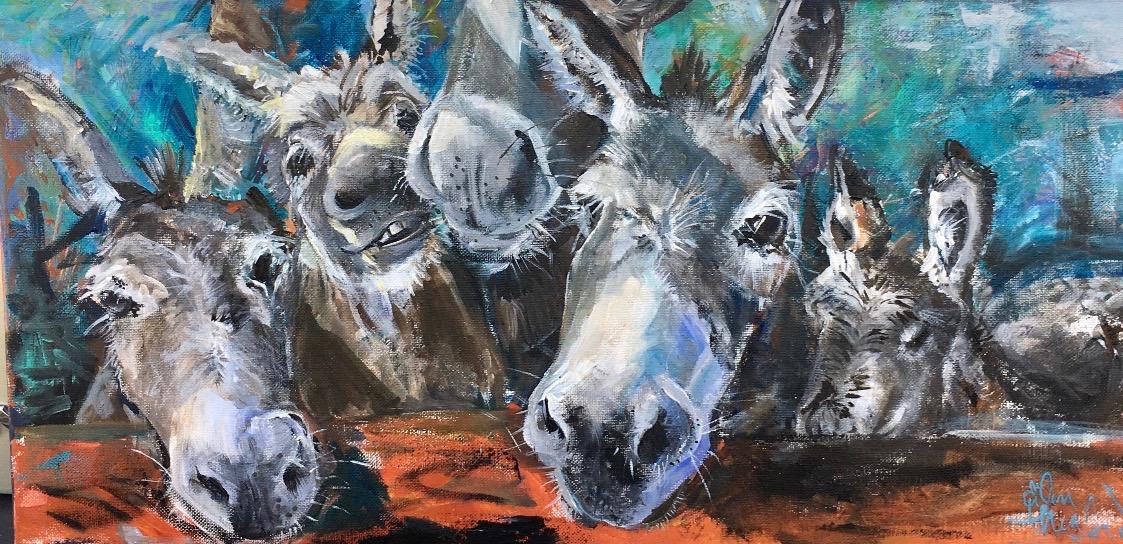 Amys Donkeys