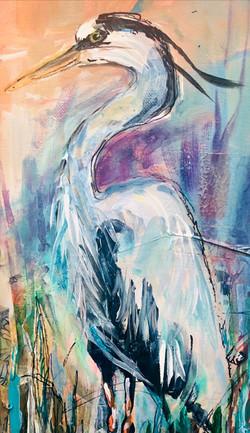 Purple Blue Heron