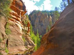 West-Fork-Photo-1024x768