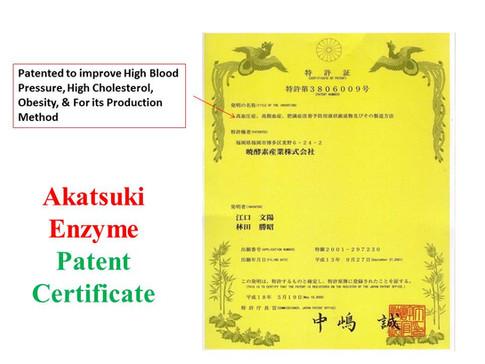 Akatsuki Patent 1.jpg