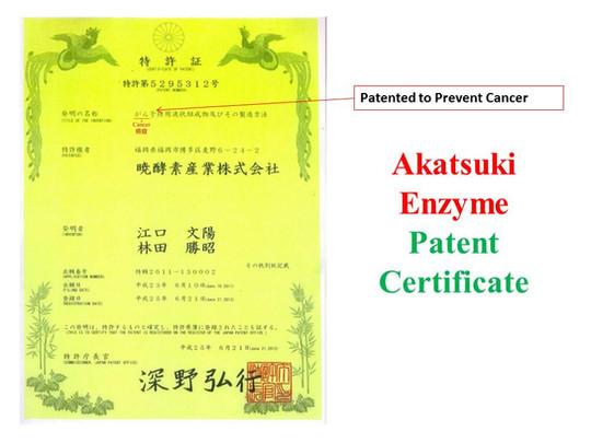 Akatsuki Patent 2.jpg