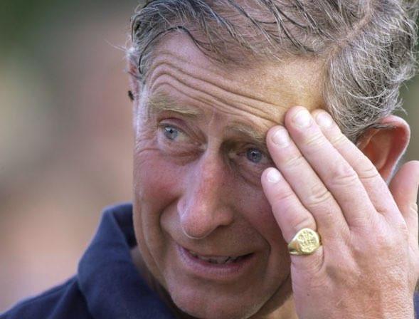 チャールズ皇太子も左手の小指にリングを身に着けていた