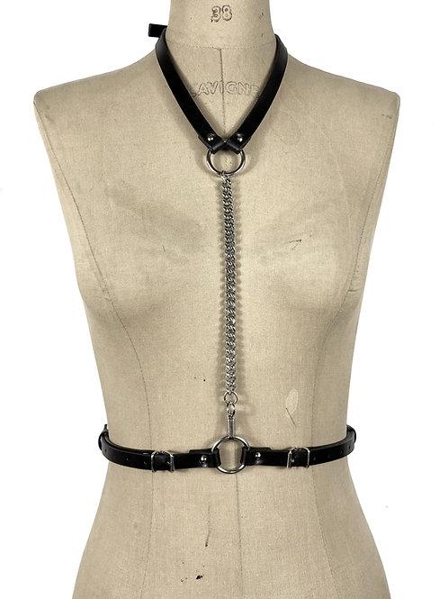 ECLIPSE harness