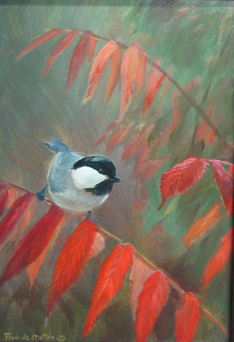 chickadee on sumac